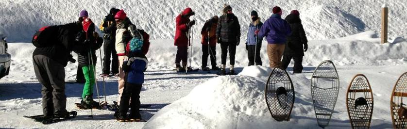 Photo of Snowshoers