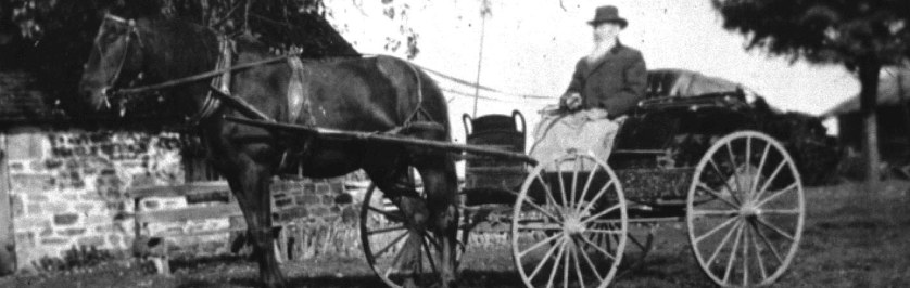 Historical Photo of Horse and Buggy